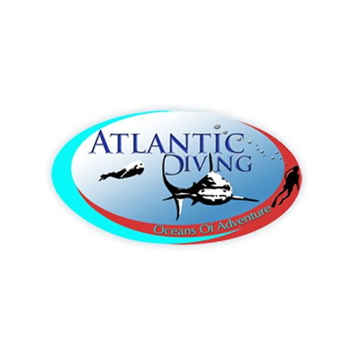AtlanticDiver.jpg