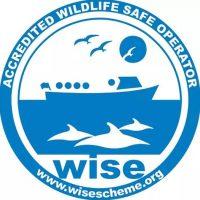 wise scheme (1).jpg